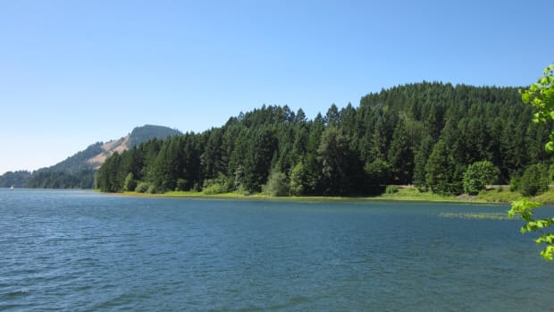 Dorena_Reservoir