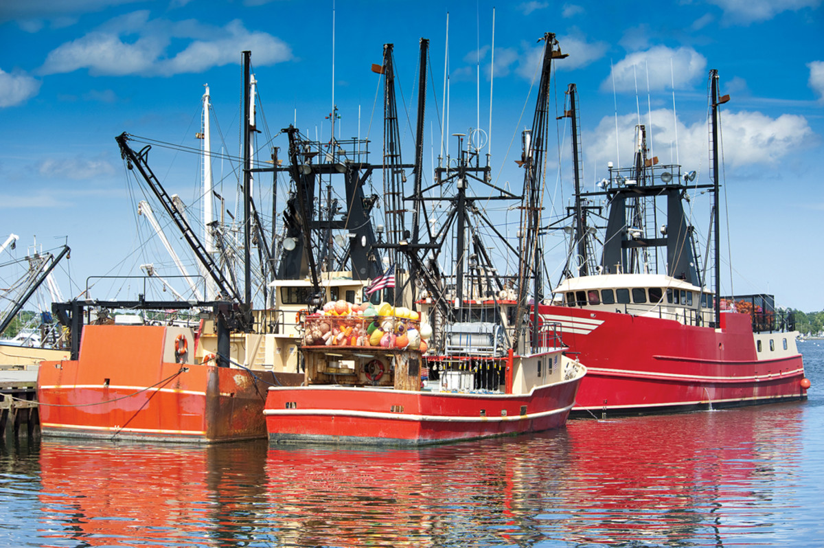 Magnuson-Stevens has focused on protecting the U.S. commercial fishing industry, sportfishing advocates say.