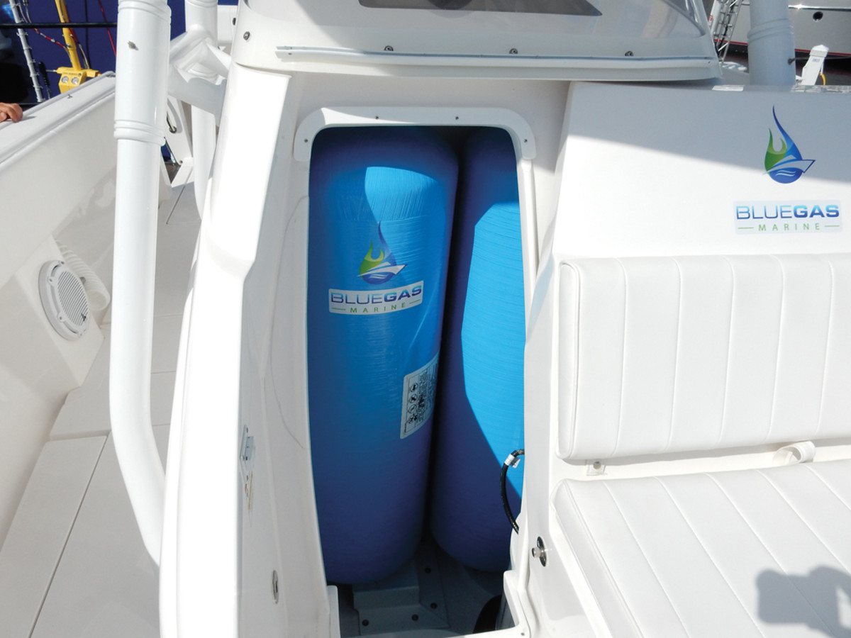 Blue Gas Marine is a pioneer in the use of natural gas as a marine fuel.