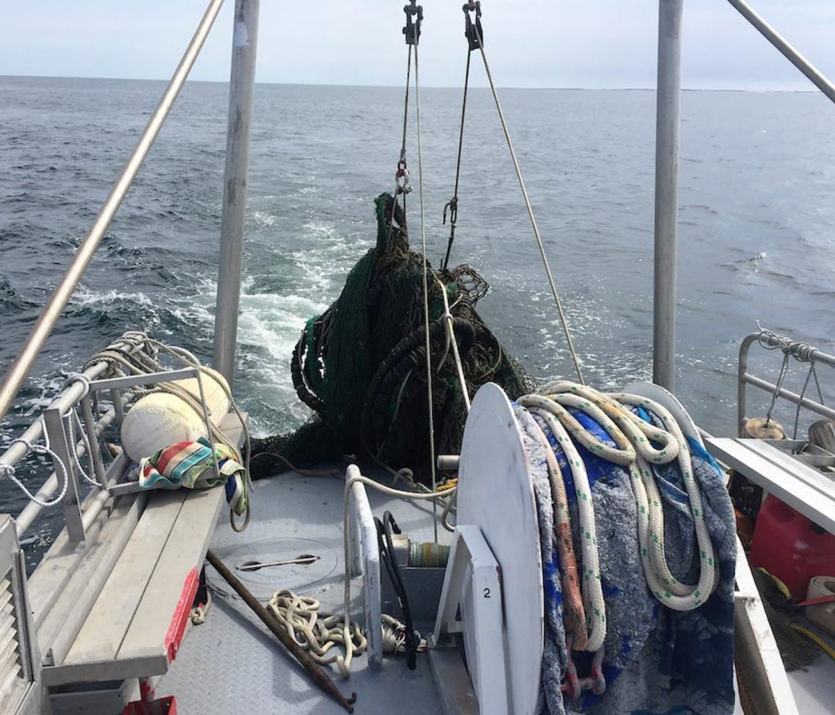 """A 1,500-pound mass of tangled, derelict fishing net that looked """"like it was breathing"""" slowly comes aboard a TowBoatUS boat in Ocean City, Md., a day before 12 rehabilitated sea turtles were released nearby."""
