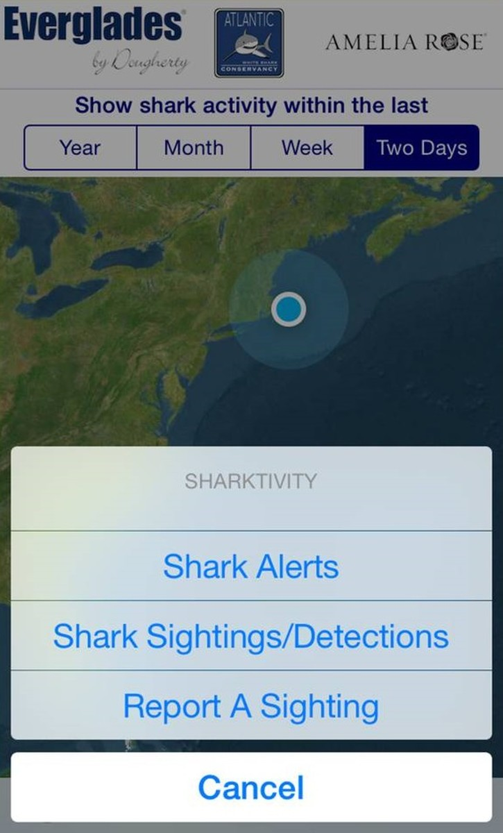 The new Sharktivity app will provide shark alerts and enable the public to report sightings.
