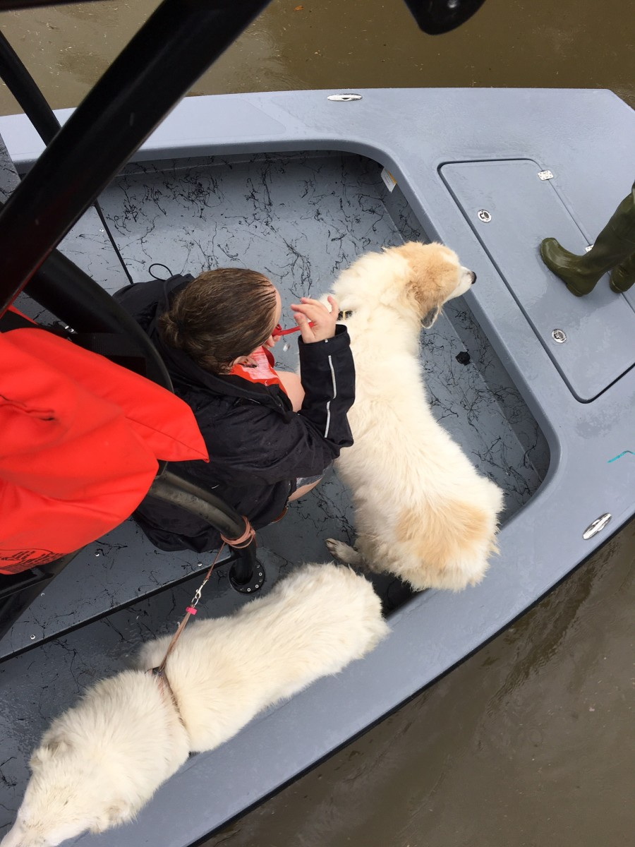 A woman and her two dogs were rescued in Pearland, Texas, by Dwayne Eschete, a member of Yamaha Marine's Pro Fishing Staff. He and two additional members have been rescuing people in shifts of 12 to 14 hours.