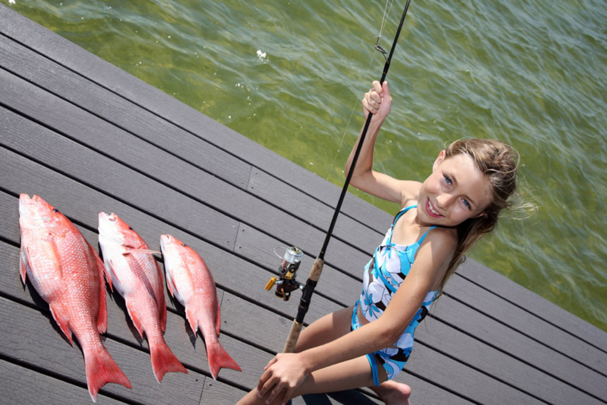 Red snapper are a favorite catch for anglers of all ages.