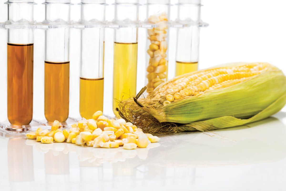 The marine industry is opposed to ethanol concentrations of higher than 10 percent in fuel.