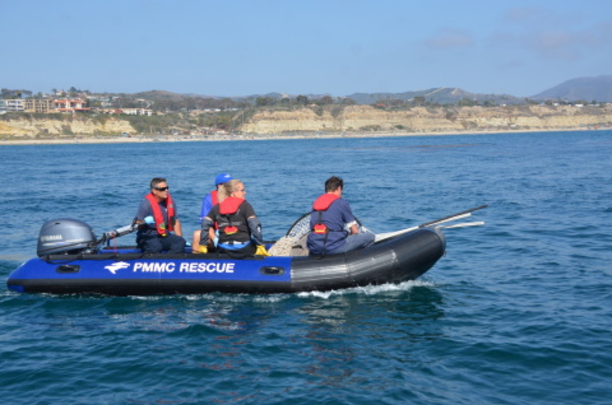 Pacific Marine Mammal Center and SeaWorld volunteers use a donated Yamaha F40 outboard on this inflatable for animal rescue on the Pacific coast.