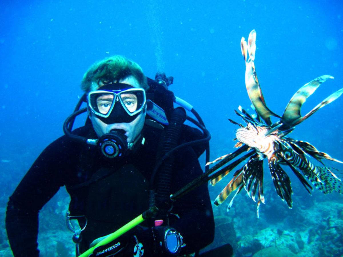 Diver skewering lionfish