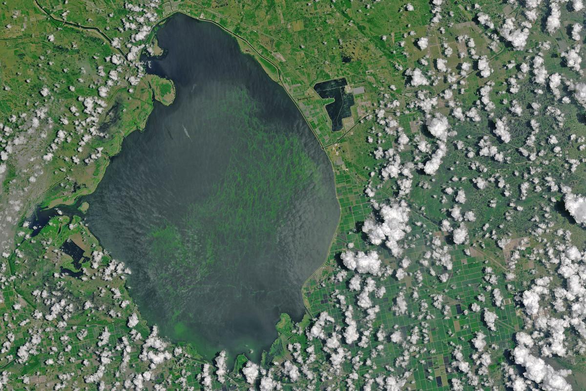 A photo of Lake Okeechobee taken from space. Courtesy of NASA.