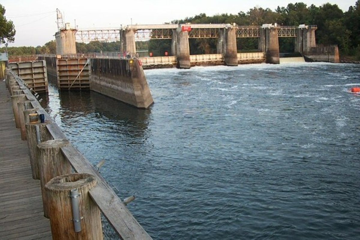 The New Savannah Lack and Dam is slated to be torn down.