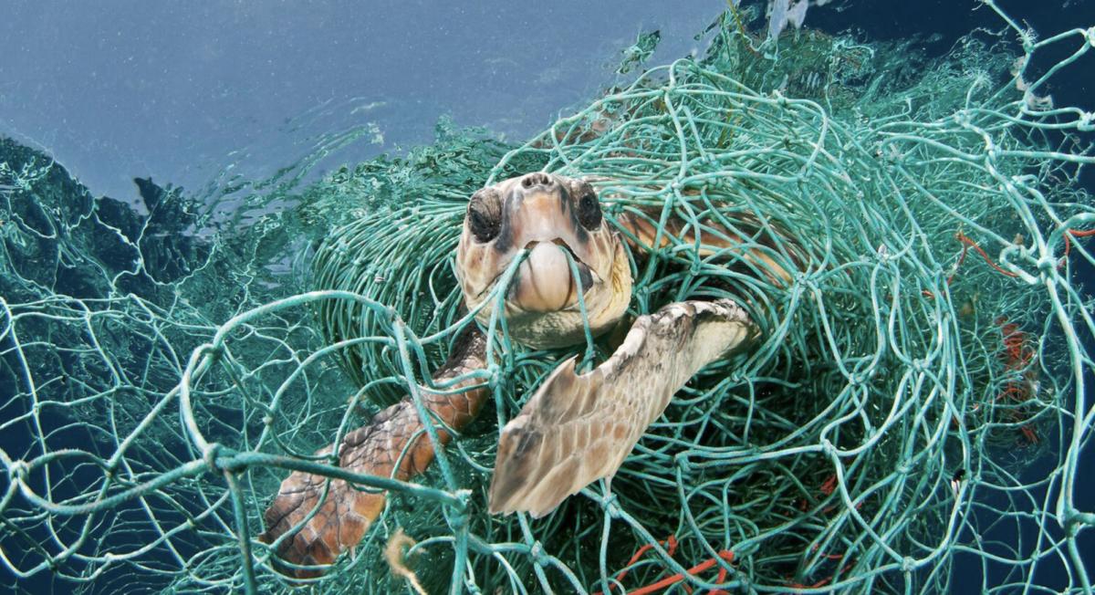 EBICleanOceans