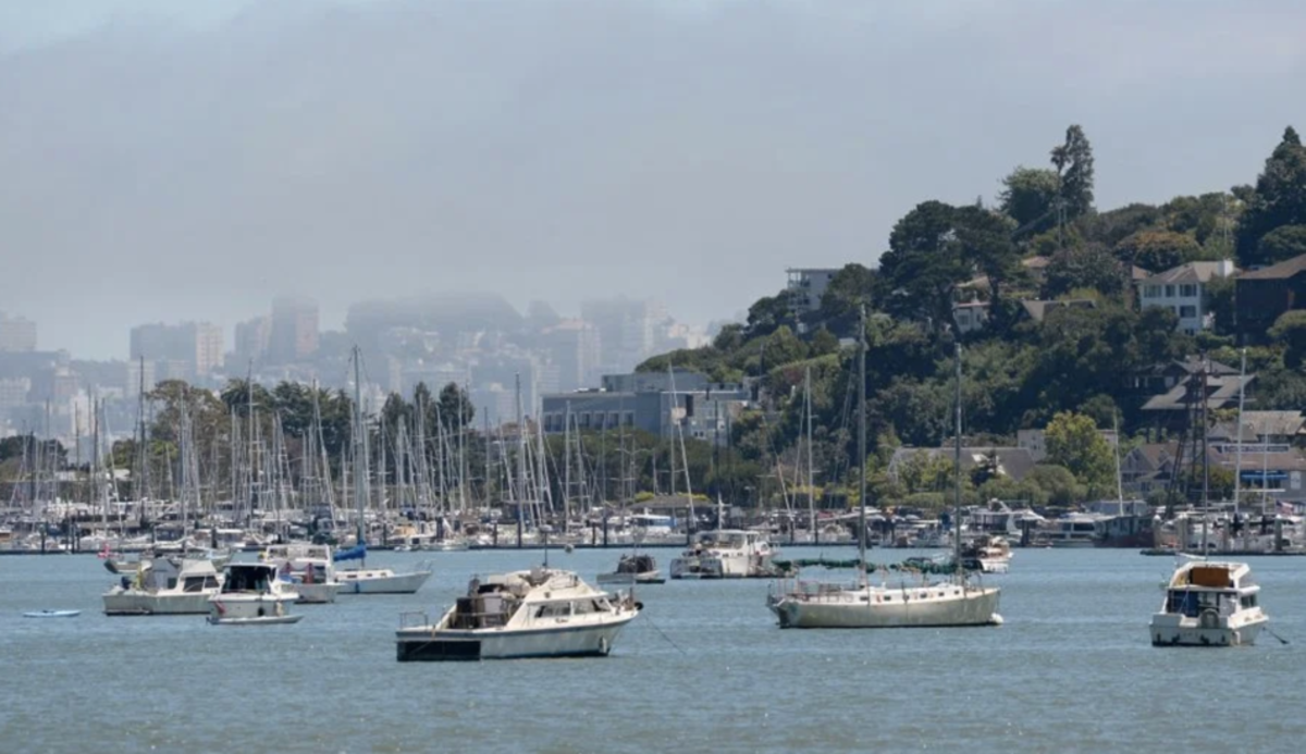 As many as 175 boats are moored in Richardson Bay off Sausalito, Calif. Photo by Alan Dep, Marin Independent Journal