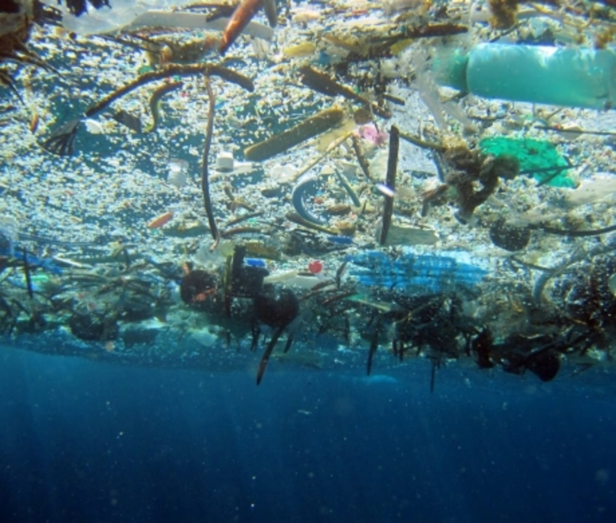 Ocean debris is a global environmental crisis.