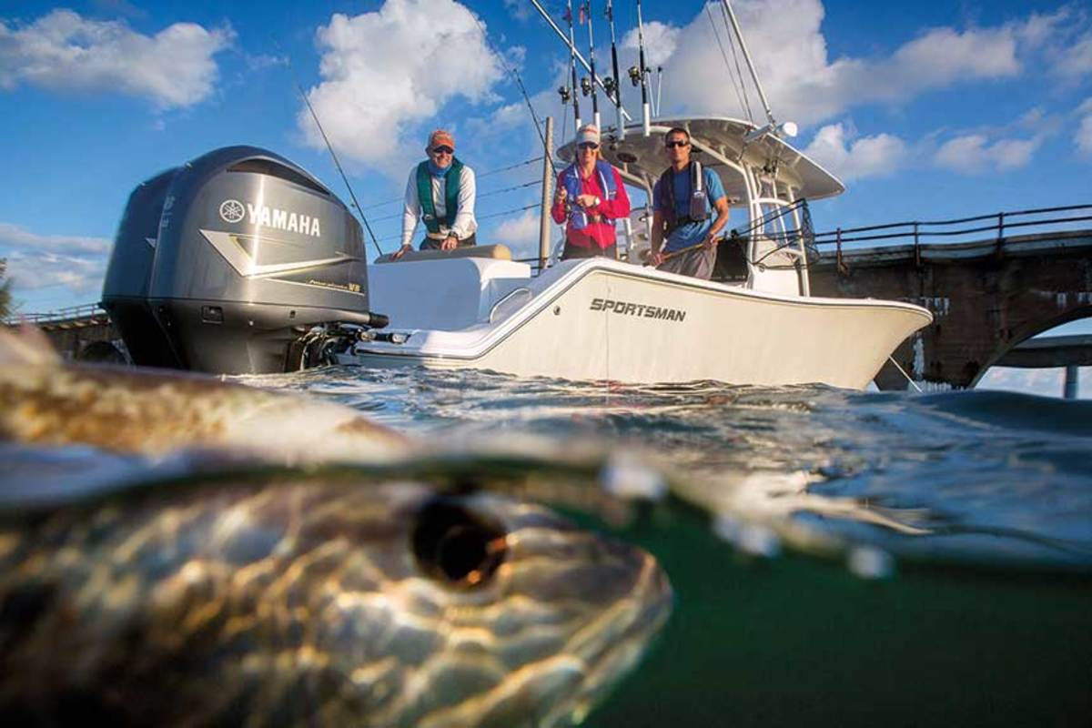 Passage of the Modern Fish Act means that government agencies must now consider recreational anglers when managing the nation's saltwater fisheries.