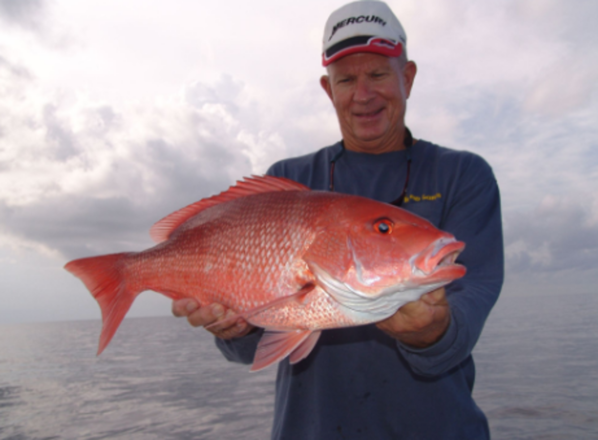 The season may be short, but anglers love catching red snapper.