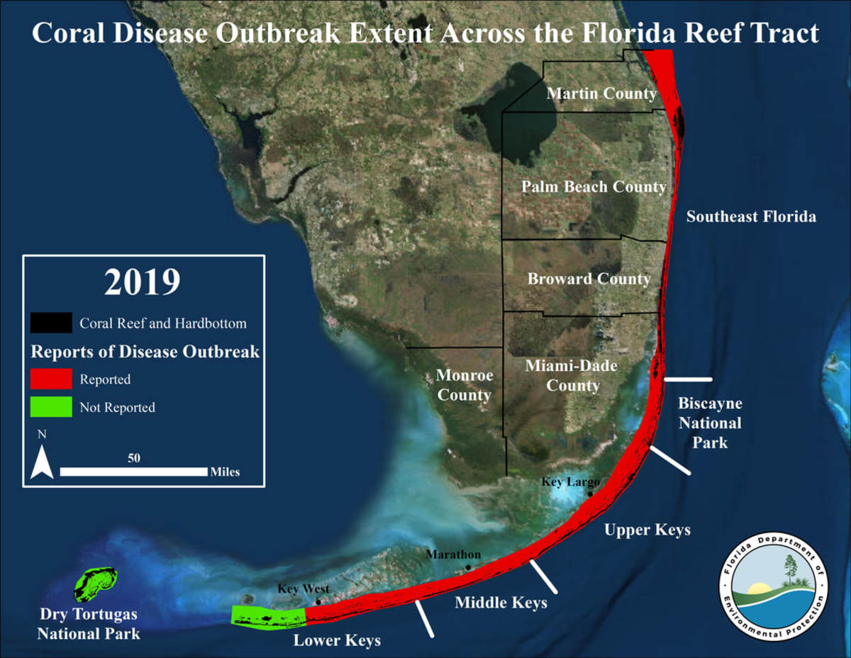 2_Floridareef2019-diseasemap_orig