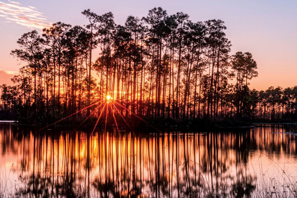 Oct.-15--Everglades-AdobeStock_186388366