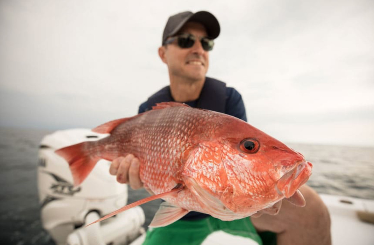 Red snappers are popular among recreational anglers. Photo courtesy of Yamaha.