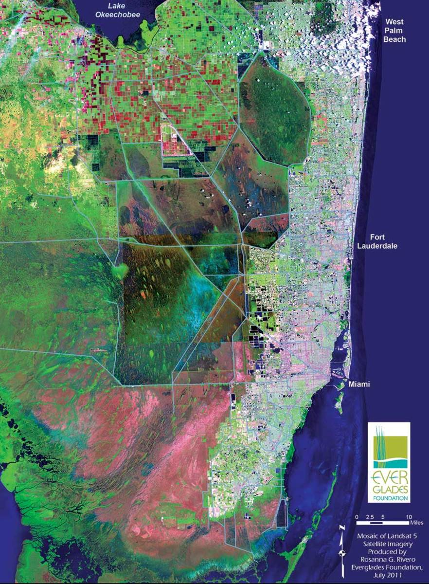 When rainwater flows south through the Everglades, it is cleansed as it passes through marshland before emptying into Florida Bay.