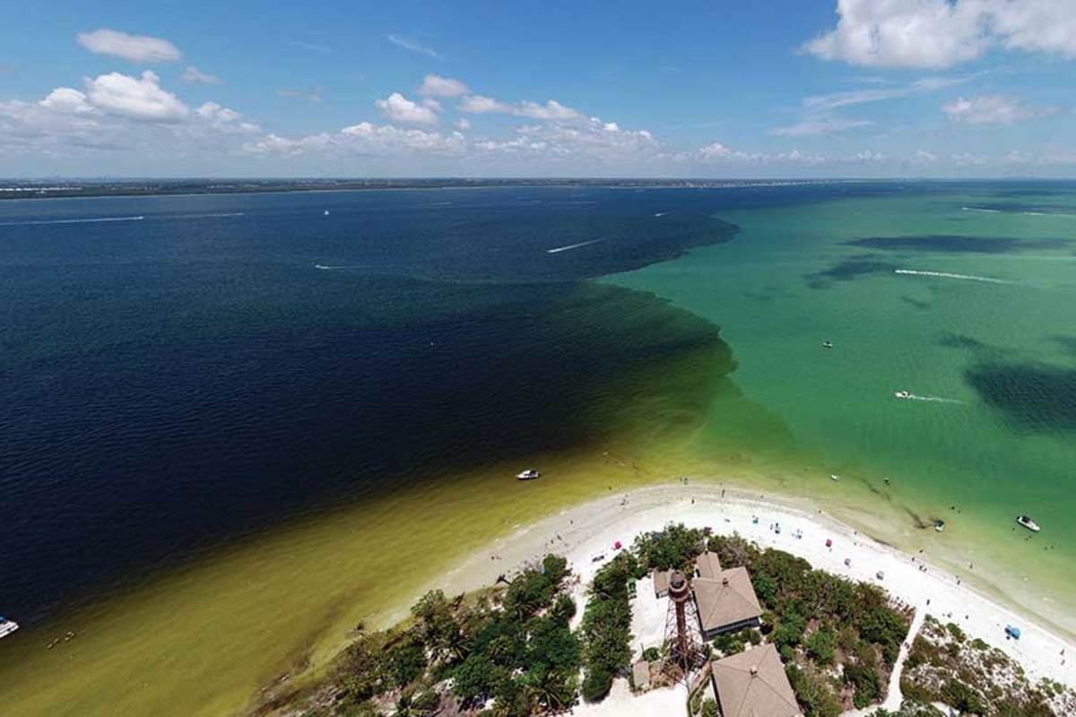 Most people stayed off their boats during the algae blooms, the effects of which rippled through South Florida's marine industry.
