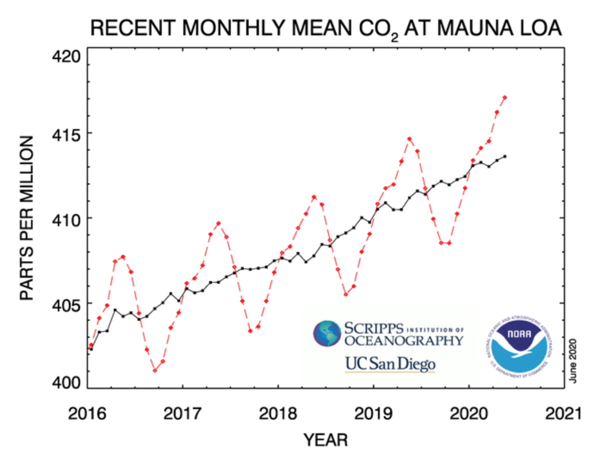 This graph depicts the last four complete years of the Mauna Loa carbon dioxide record plus the current year. The dashed red lines represent the monthly mean values, centered on the middle of each month. The black lines represent the same, after correction for the average seasonal cycle. Credit: NOAA