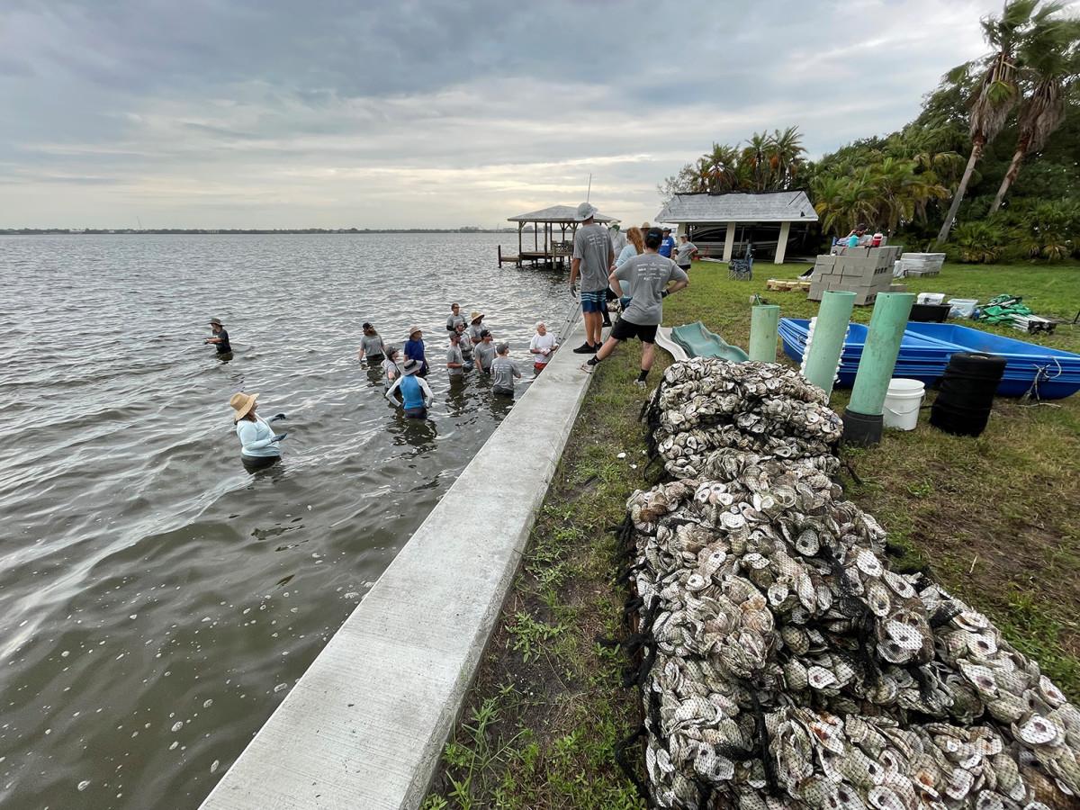 2_Watershed Innovation Reef
